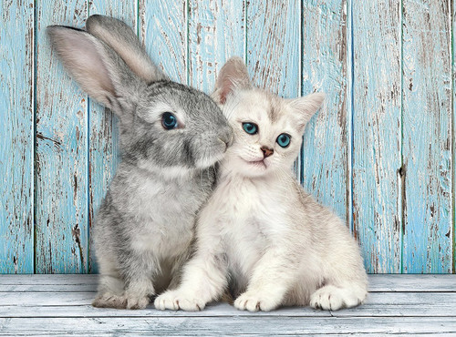 Cat & Bunny - 500pc Jigsaw Puzzle by Clementoni