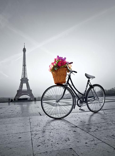 Romantic Promenade in Paris - 500pc Jigsaw Puzzle by Clementoni