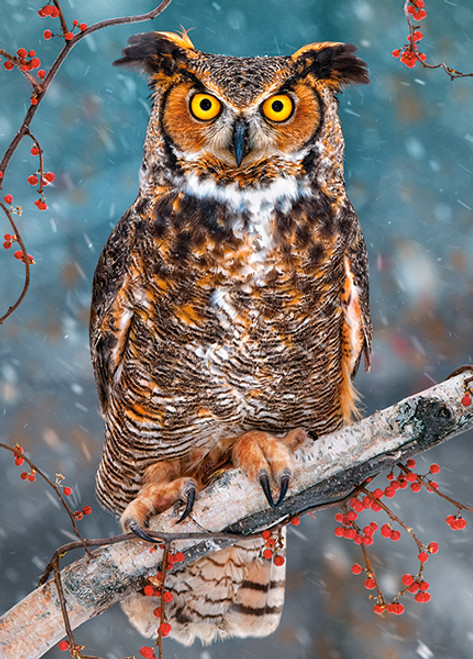 Great Horned Owl - 260pc Jigsaw Puzzle By Castorland