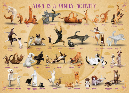 Yoga is a Family Activity - 500pc Jigsaw Puzzle by Eurographics
