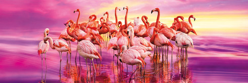 Flamingo Dance - 1000pc Panoramic Jigsaw Puzzle by Clementoni