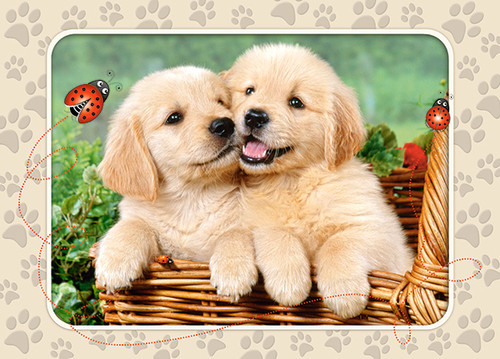 Golden Retriever Pups - 60pc Jigsaw Puzzle By Castorland