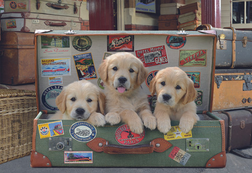 Puppies in the Luggage - 500pc Jigsaw Puzzle by Educa
