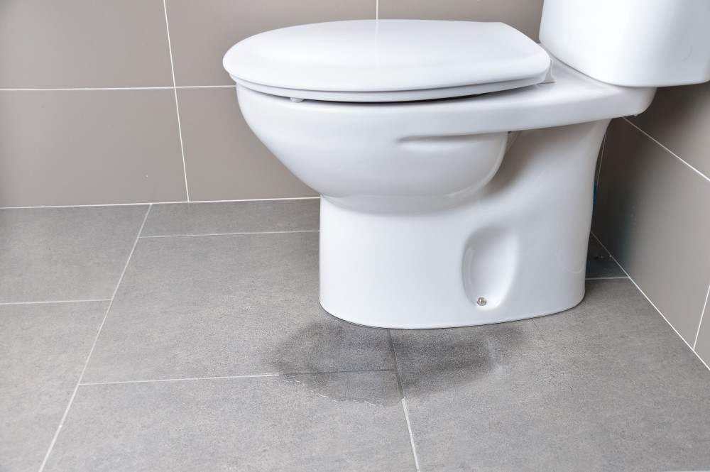 Bathroom Flood Risks: Prevention and Mold Considerations