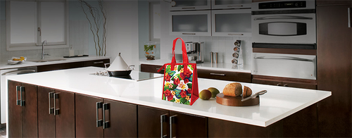 Insulated Lunch Bag with a red handle sitting on a counter in a modern kitchen