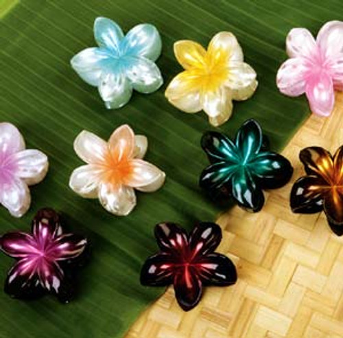 Large Hair Clips by Hawaiian Glamour. Available in the following colors: Light Pink, Light Blue, Light Purple, Dark Pink, Dark Blue, Dark Purple. Also shown in yellow color which is no longer available.