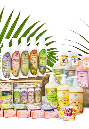 Complete Range of Haku Cosmetics
