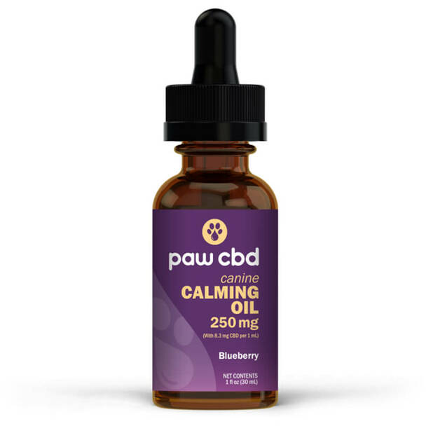 cbdMD - CBD Pet Tincture - Blueberry Calming Oil for Canines - 250mg-500mg