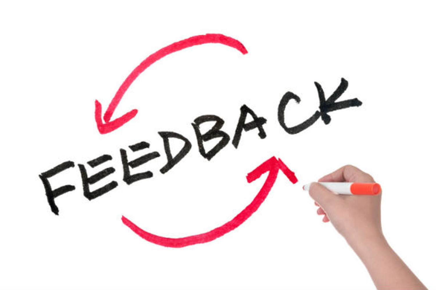 Reviews and feedback are imperative to our success