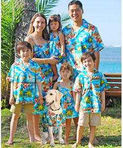 Hibiscus Hawaiian Islands