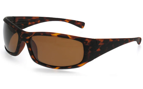 Tortoise Frame/Polarized Brown Lens