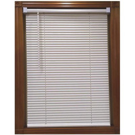 Designer's Touch Alabaster Cordless Light Filtering Vinyl Blind With 1 In. Slats  62.5 In. W X 64 In. L