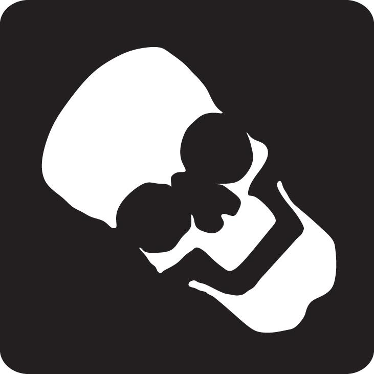 HalloweenSkull 2
