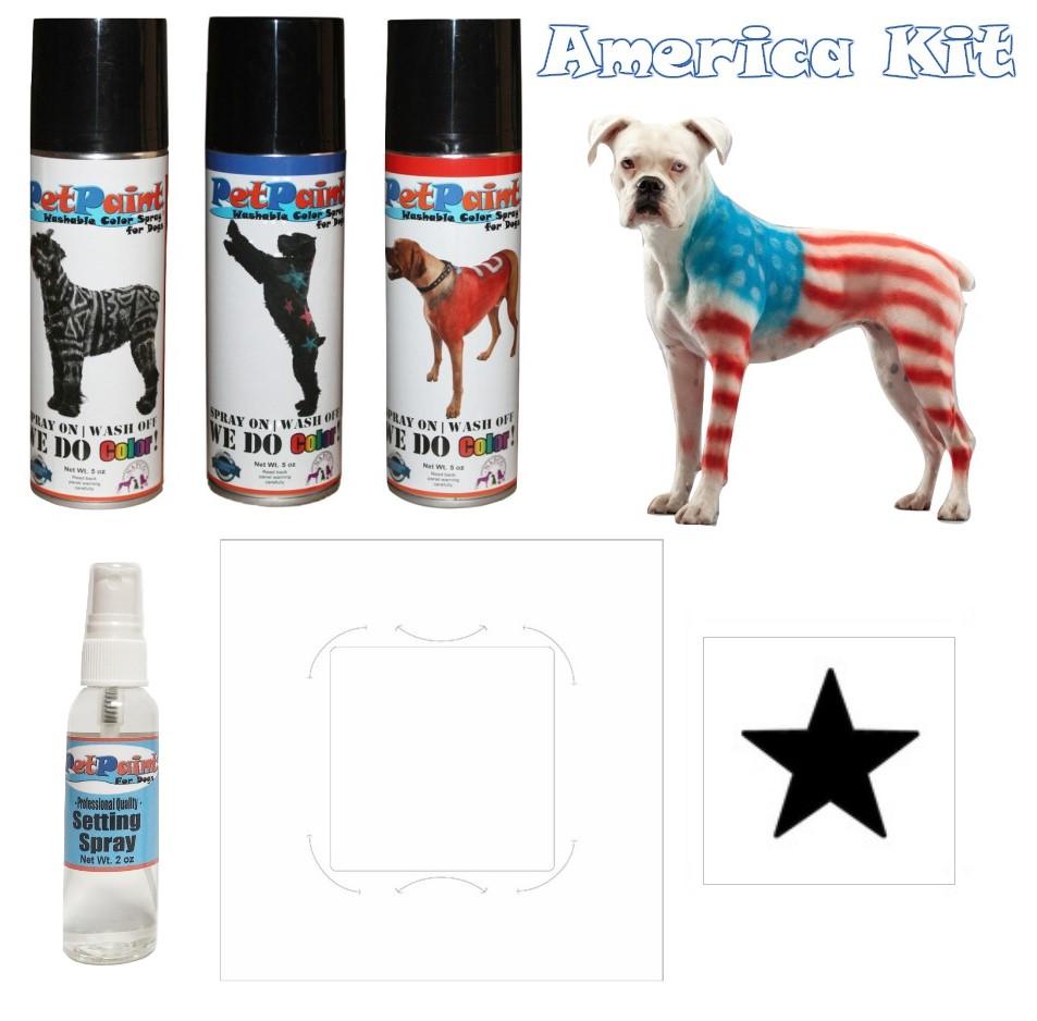 America Kit