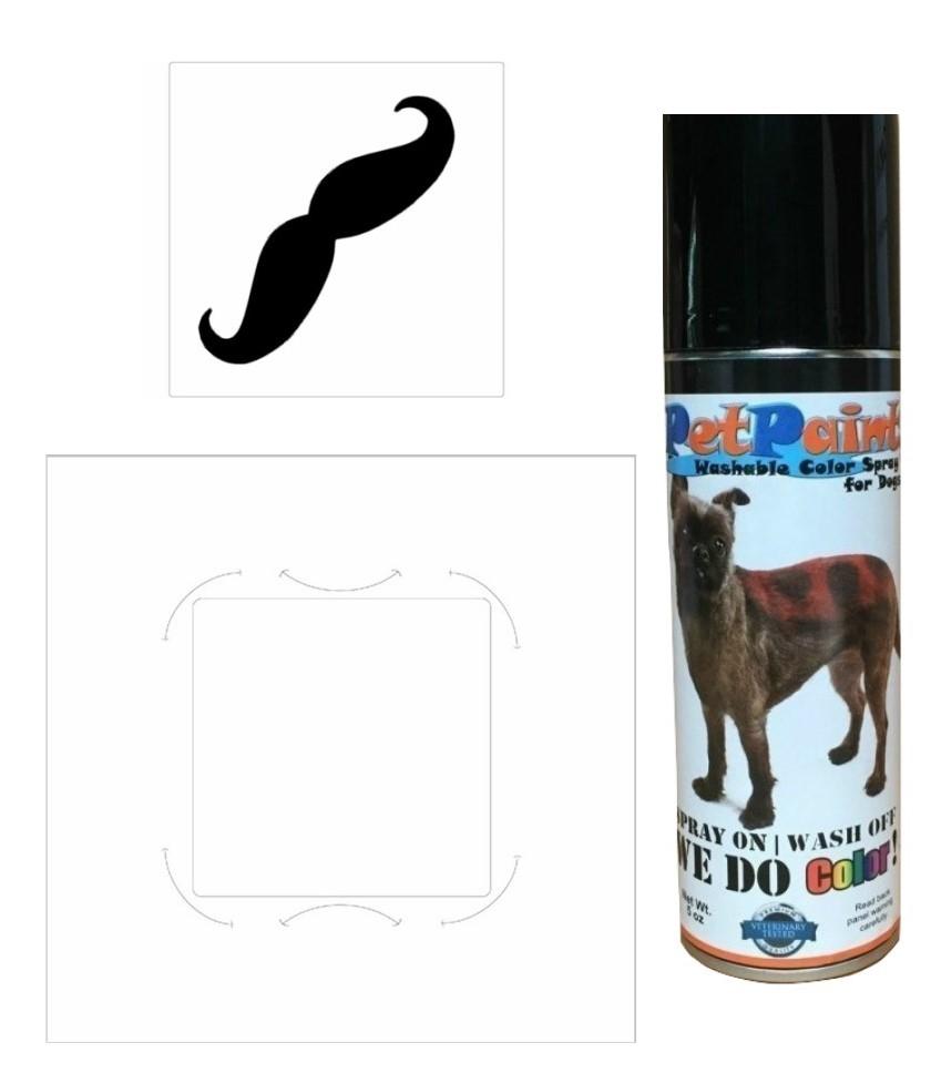 Black Mustache Kit