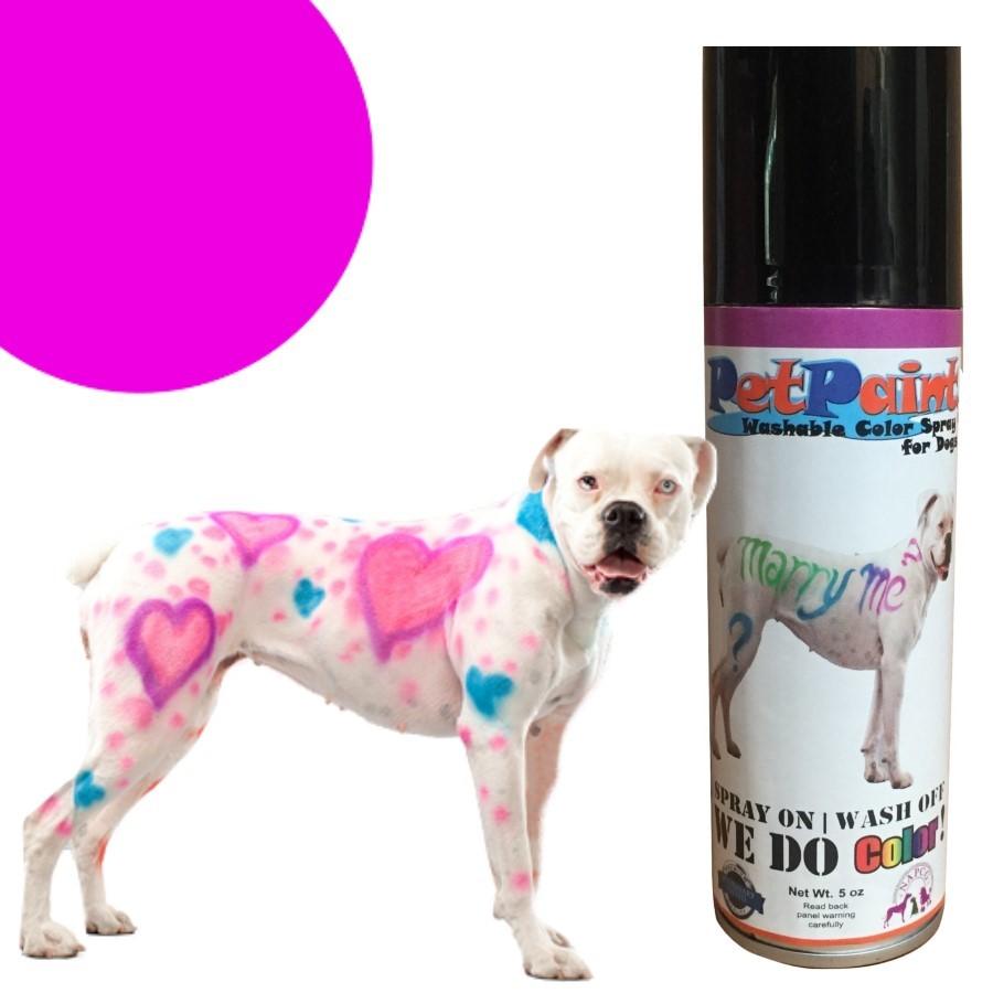 Colored Pet Hair Spray - Pug Purple