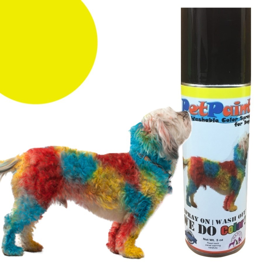 Colored Pet Hair Spray - Yorkie Yellow