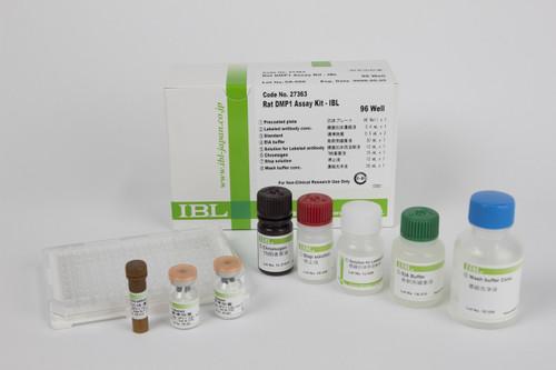 Dentin Matrix Protein 1 (DMP1)(Rat)
