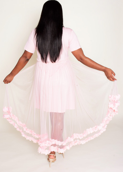 Blush Flower Trim Mesh Dress