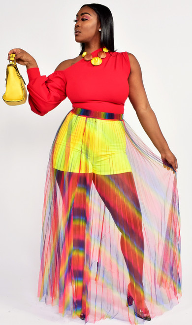 Multi Colorful  Sheer Mesh skirt