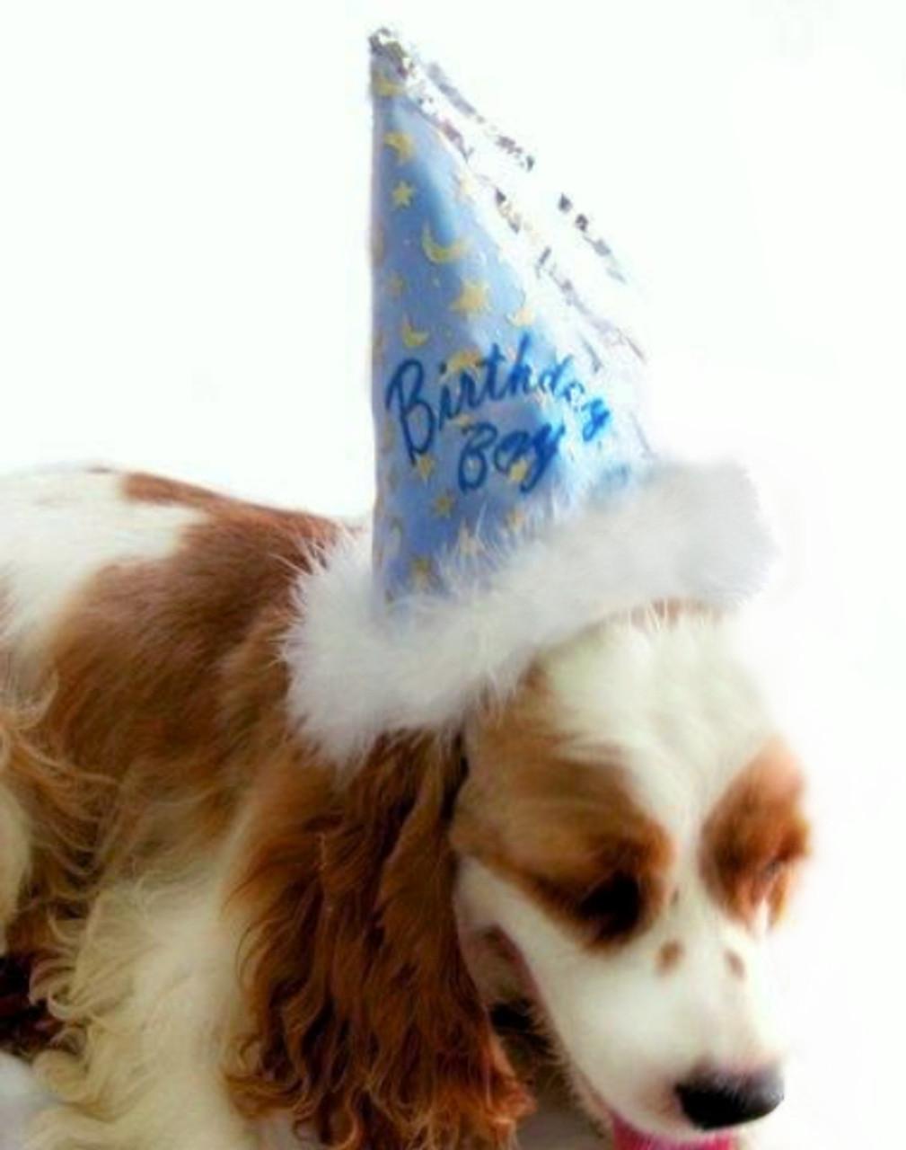 Dog Birthday Party Hat