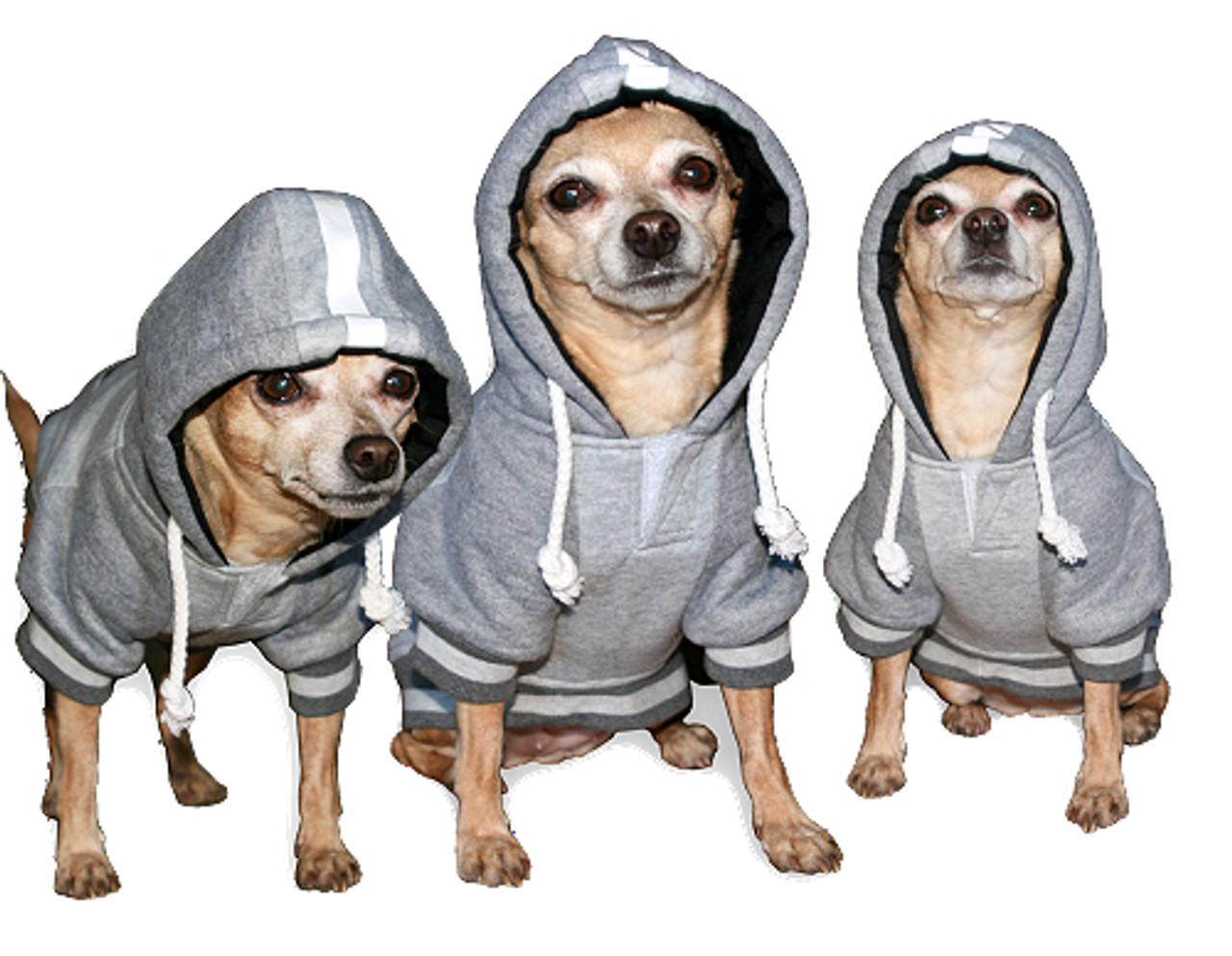 All Star Dogs NCAA Indiana Hoosiers Cotton Hooded Dog Sweatshirt