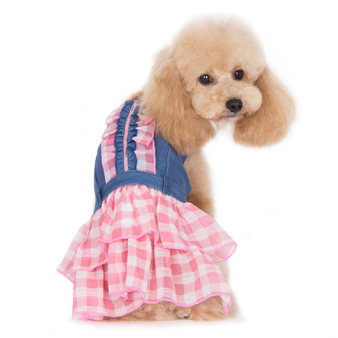 Denim dog harness dress-pink skull houndstooth