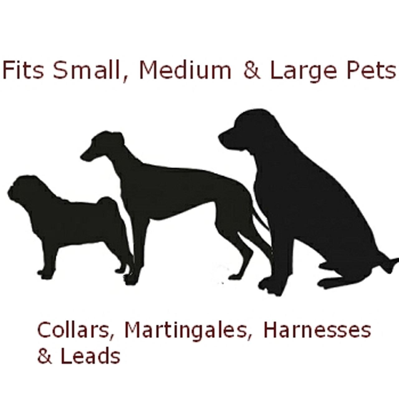 Adjustable Length Dog Collar 1 Inch width Starfish Dog Collar