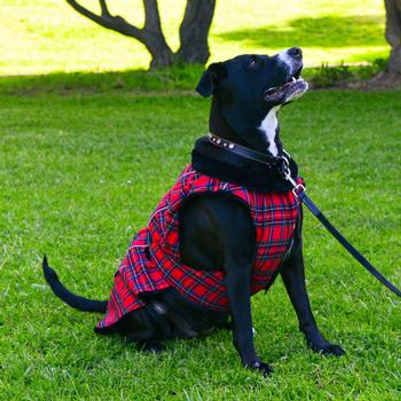 Red And Green Plaid Alpine Flannel Dog Coat Size Medium