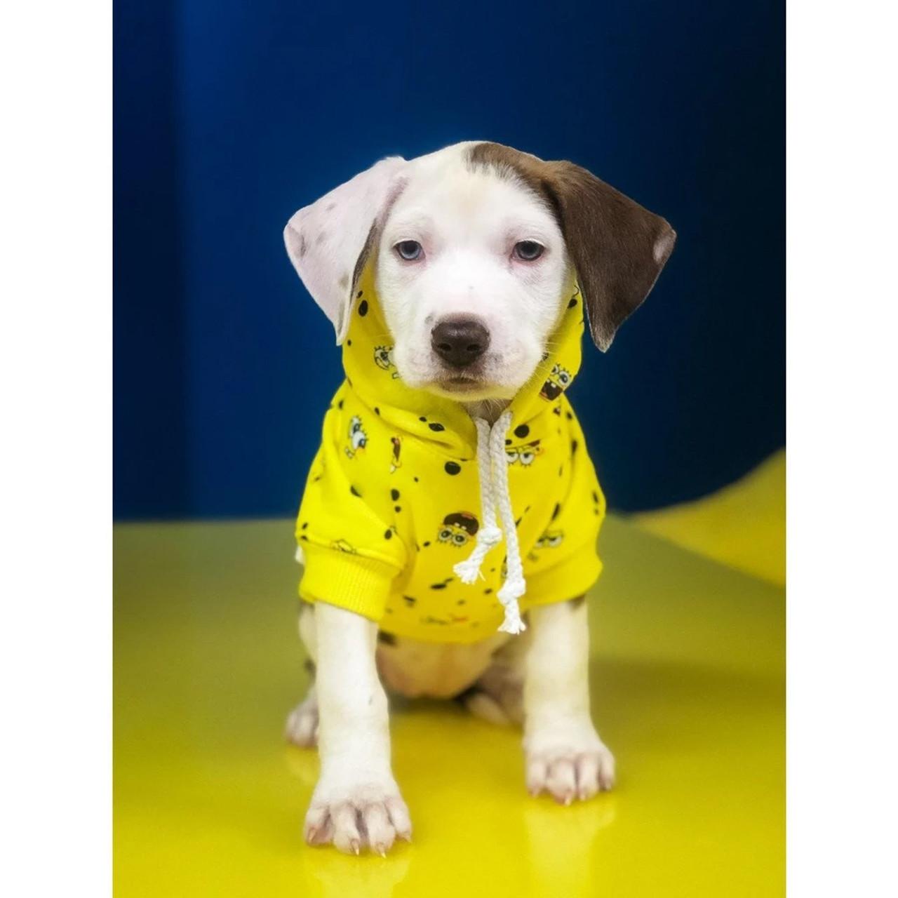 Oklahoma Sooners NCAA Pet Dog Grey Hoodie Size Medium