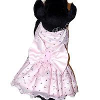Confetti Collection Pink Designer Dog Dress