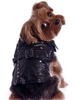 Studded Motorcycle Dog Jacket / Coat