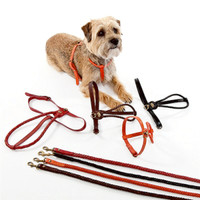 Braided Leather Dog Harness