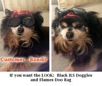 Dog Doo Rags