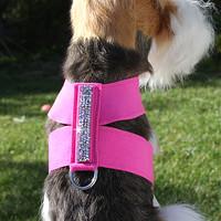 Crystal Rocks Dog Tinki Harness by Susan Lanci - 19 Colors