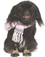 Urban Pink Stripe Dog Scarf