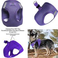 American River Choke Free Step In Dog Harness - Purple - 1 - 50 lbs
