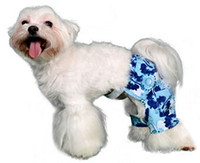 Mykonos Dog Swim Trunk or Board Shorts