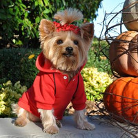 Sport Dog Hoodie - Flame Scarlett Red - Tiny - Big Dog Sizes