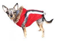 Swiss Alpine Dog Ski Vest Jacket - Red / Detachable Hood - BIG Dog Sizes