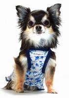 Blue Rose Dog Dress