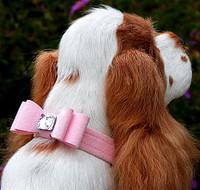 Wide Big Bow Dog Collar - Susan Lanci