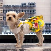 Yellow Floral Suspender Dog Dress