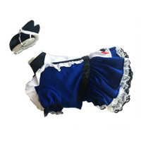 Alice Blue Pet Dog Costume
