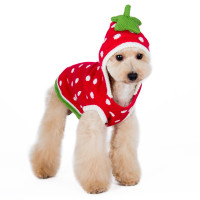Strawberry Red Dog Sweater