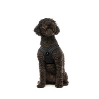 Escape Free Sport Pet Dog Harness - Black