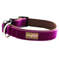 Dark Purple Velvet Dog Collar & Optional Leash - Olive