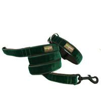 Dark Green Velvet Dog Leash - Evergreen
