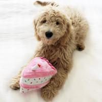Birthday Cake Pet Dog Toy - Pink