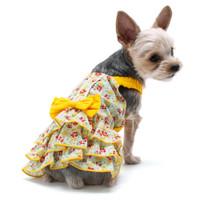 Southern Belle Dog Dress